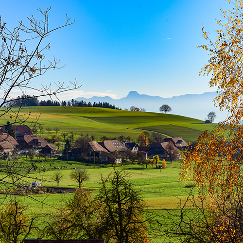 SWISS TAVOLATA in autumn