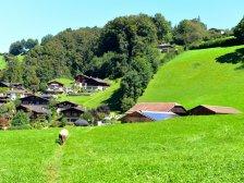 Ausblick vom Berner Oberländer Bauernhaus